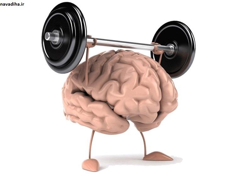 ۶ راهکار طب سنتی برای افزایش حافظه