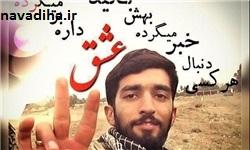 استقبال شاعرانه از پیکر شهید حججی