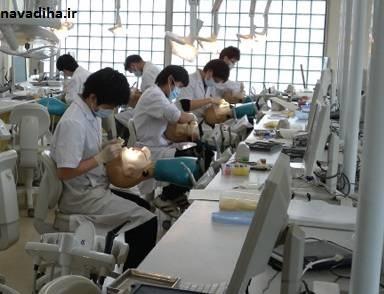 سودجویی چشم بادامیها از تب دکتر شدن در ایران/ دندانپزشکان چینی هم از راه رسیدند