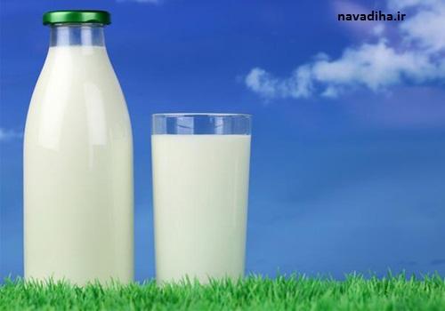 شیر کم چرب یا شیر کامل و پرچرب؛ کدام بهتر است؟
