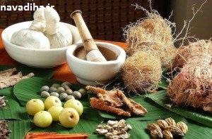 توصیه های طب سنتی برای دستگاه گوارش