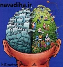 کلیپ نکات مهمی درباره حافظه و یادگیری در انسان