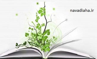 رسم کتاب خوانی در برنامه ریزی روزانه
