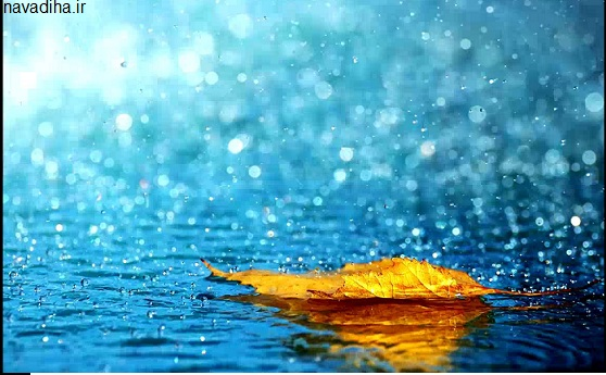 """نوشیدن آب باران/""""نیسان"""" آب شفا بخشی که فقط یک ماه وقت دارید آن را بنوشید!"""
