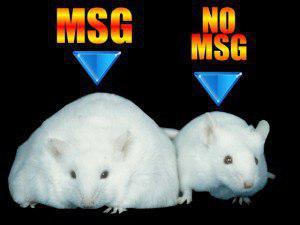 خطرات مصرف مونوسدیم گلوتامات_غذاهای کنسروی