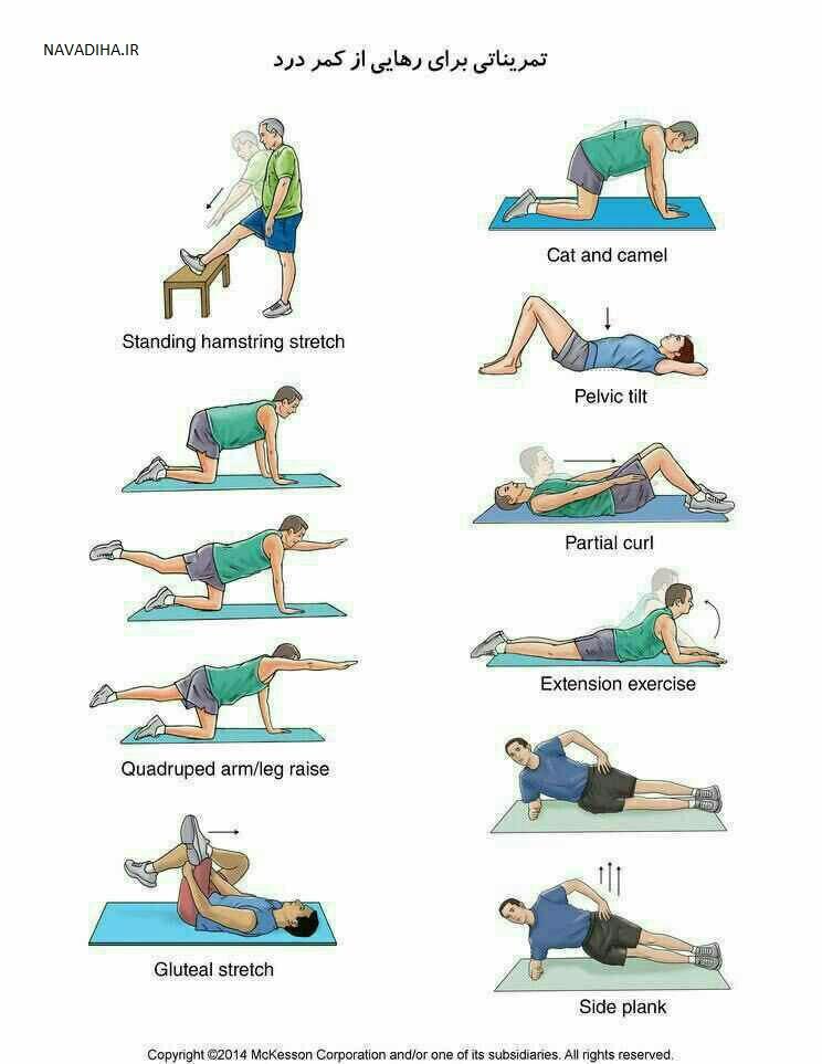 کلیپ ۵ حرکت ورزشی برای تسکین درد انتهای کمر